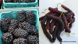 The Difference Between Mulberries and Blackberries.